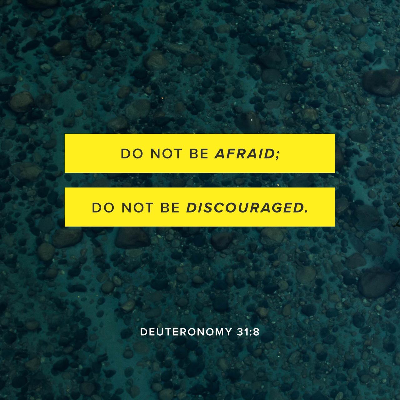 ScriptureArt_0817_-_Deuteronomy_31_8_NIV_English
